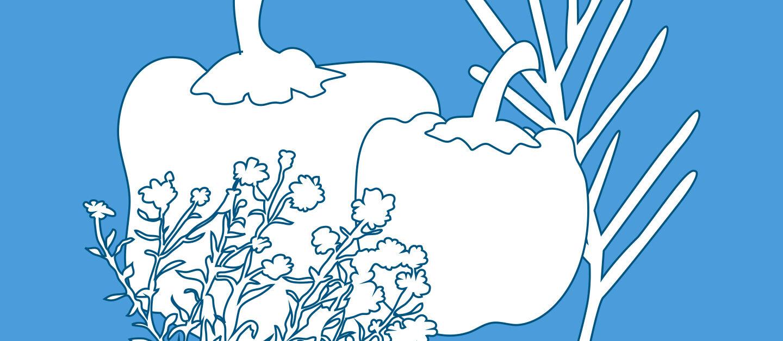 Header Illustration